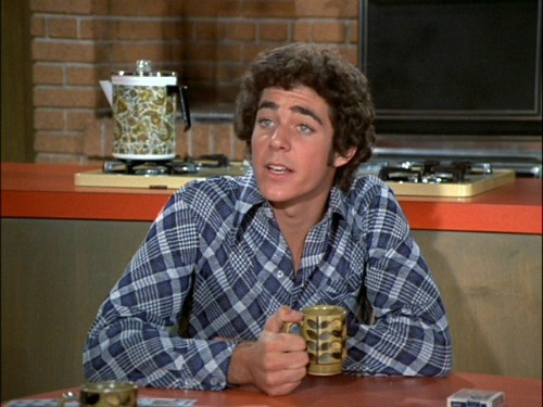 barry williams greg brady