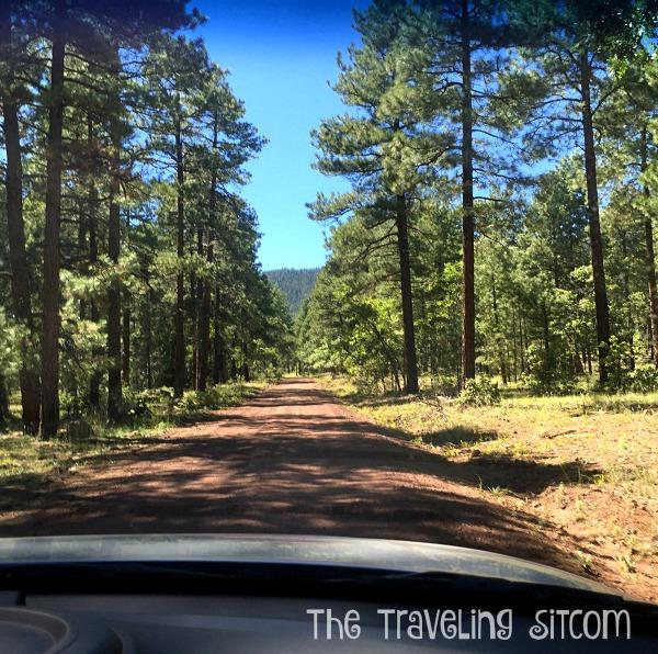 local secrets of williams arizona