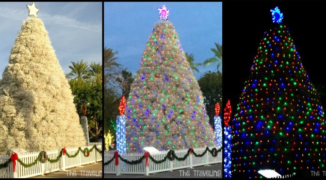 Only in Arizona- The Tumbleweed Christmas Tree!
