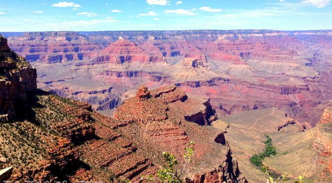 Northern Arizona and the Grand Canyon!