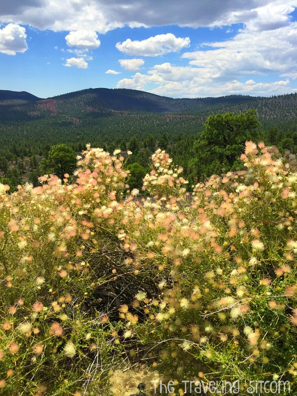 wupatki national monument and sunset crater