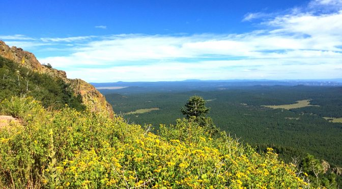 Local Secrets of Northern Arizona!