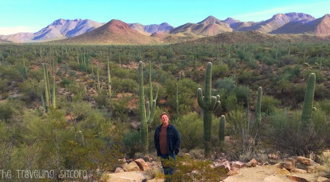 A visit to Saguaro National Park