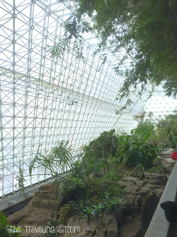 look at biosphere 2 the human experiment3