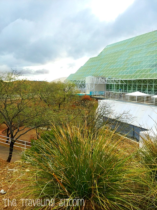 look at biosphere 2 the human experiment8