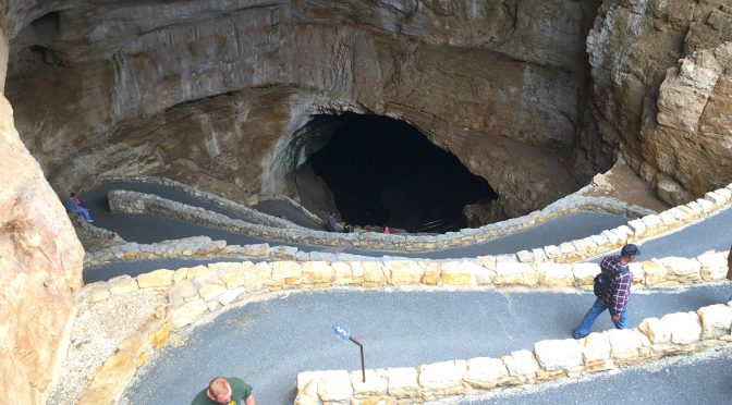Bat Central: Carlsbad Caverns