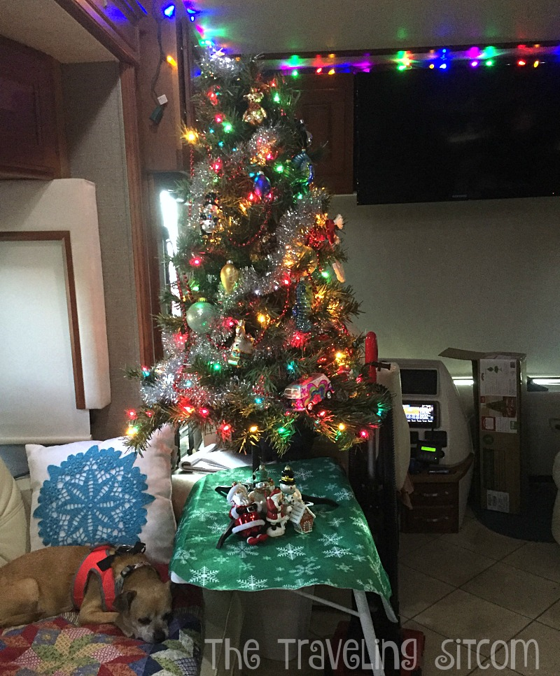 Christmas Tree In The Desert.Christmas Tree In Rv The Traveling Sitcom