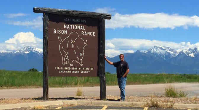 A Summer in Montana